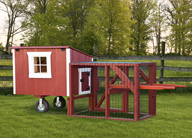 Lean-To Style Chicken Coops