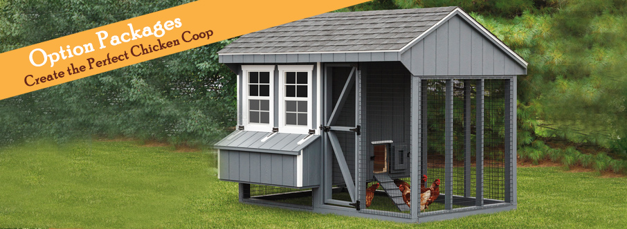 the best chicken coop options